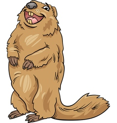 marmot animal cartoon vector image vector image
