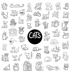black and white cats big set vector image