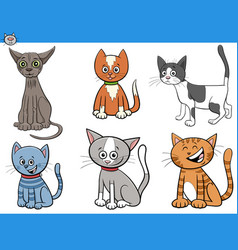 cartoon cats and kittens comic characters set vector image