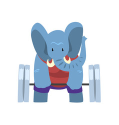 Elephant exercising with a barbell funny sportive vector