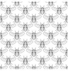 fly contour pattern vector image