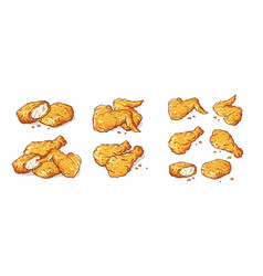 Leg wings and nuggets fried chicken isolated set vector