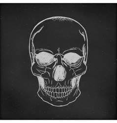 Hand drawn Skull Chalkboard Background vector image