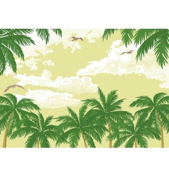 Tropical landscape palms seagulls and sky vector image vector image