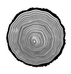 Tree rings vector