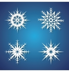 Winter snowflakes set for Christmas design vector image vector image