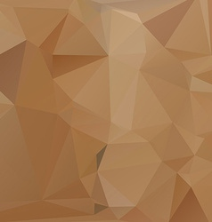 Abstract paper Geometric Background for Design vector image