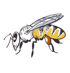 bee apiary icon honey product and beekeeping vector image