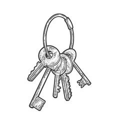 Bunch keys sketch vector