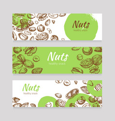 Eating nuts and seeds banners healthy food banner vector