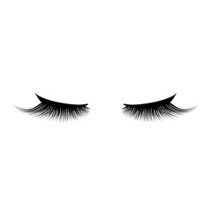 Eyelash extension a beautiful make-up thick vector