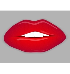 Open Mouth with red lips vector