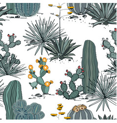 seamless pattern with cactus plants blue agave vector image