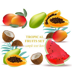 fruits coconut avocado papaya kiwi pomegranate vector image