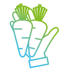 hand with fresh carrots vector image
