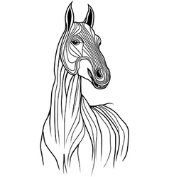 Horse head animal for t-shirt sketch tattoo design vector