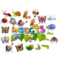 Large insect pack set vector