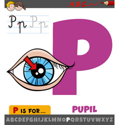 Letter p from alphabet with pupil eye vector
