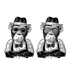 monkey hipster with arms crossedin in hat shirt vector image