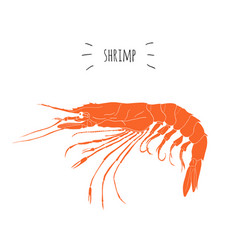 Orange shrimp logo isolated on white background vector