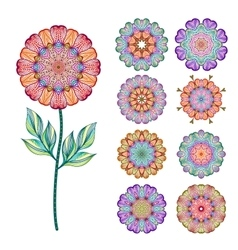 Set of abstract isolated colorful flowers vector