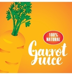 banner with carrot vector image vector image