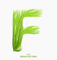 letter f of juicy grass alphabet green f vector image