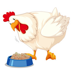 Chicken eating. Cute clipart vector images