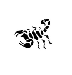 abstract black scorpion design template vector image