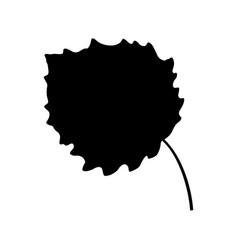 aspen leaf vector image
