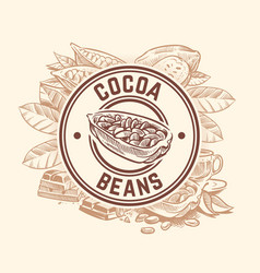 cocoa bean tree chocolate cacao sketch vector image