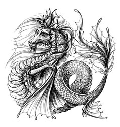 Dragon graphic black-and-white water vector