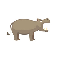 Hippo cartoon style wild herbivorous vector