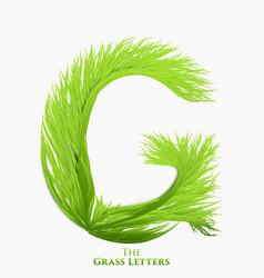 Letter g of juicy grass alphabet green g vector