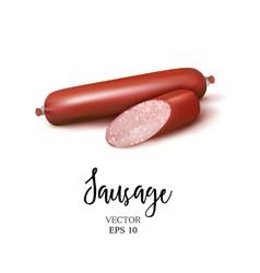 realistic smoked sausage vector image