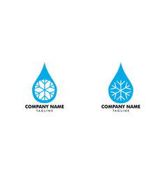 set of a drop of water with the snowflake icon vector image