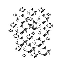 silhouette set collection fish aquatic animal with vector image vector image