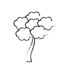 Sketch tree sakura japanese flora vector