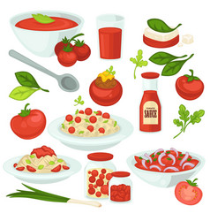Tomato food meals salads and dishes with tomatoes vector