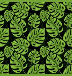monstera seamless beckground tiled jungle pattern vector image