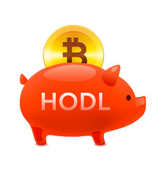 cryptocurrency hodl concept pig money box icon vector image