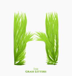 Letter h juicy grass alphabet green h vector