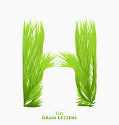 Letter h of juicy grass alphabet green h vector