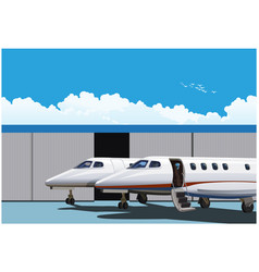 luxury business jets vector image