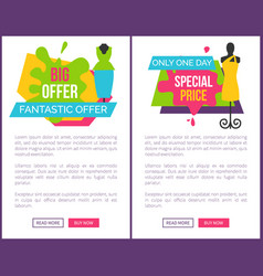only one day special price fantastic offer women vector image