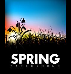Spring grass dawn background vector