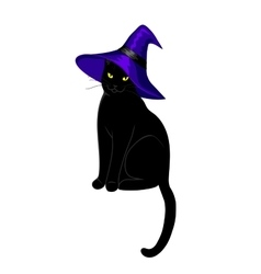 Black cat isolated vector