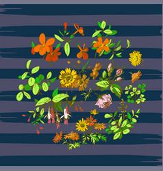Hand drawn wreath tropical flower vintage print vector