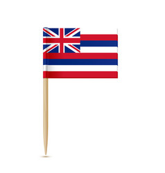 Hawaii flag toothpick vector
