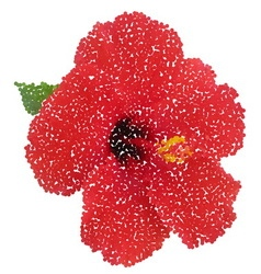 Hibiscus dotted flower vector